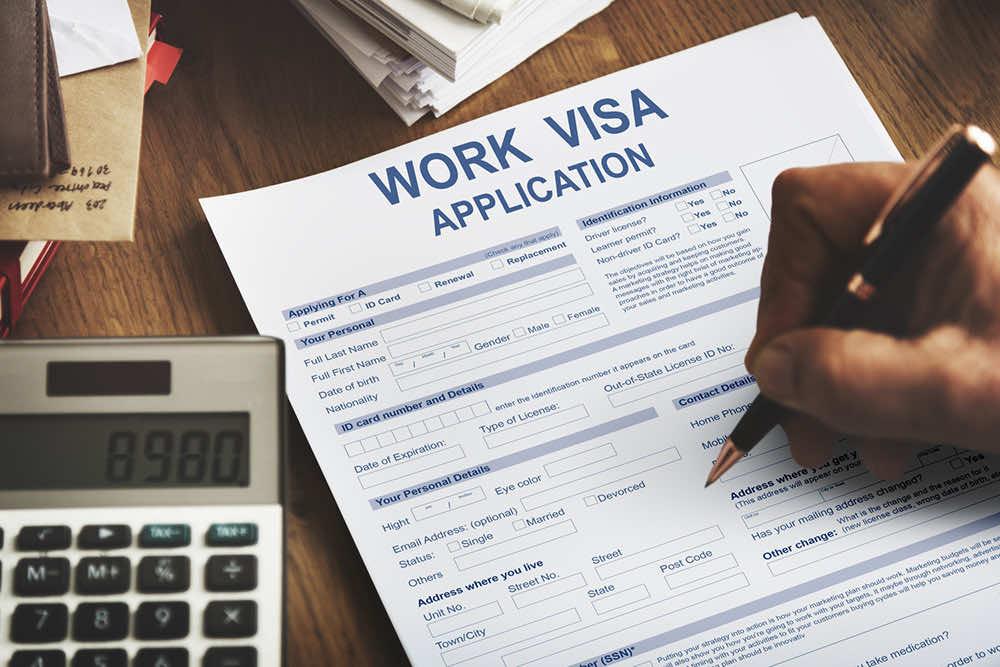 就労ビザの取り方と種類をご紹介!在留資格とは違うの?
